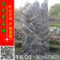 天然景观太湖石